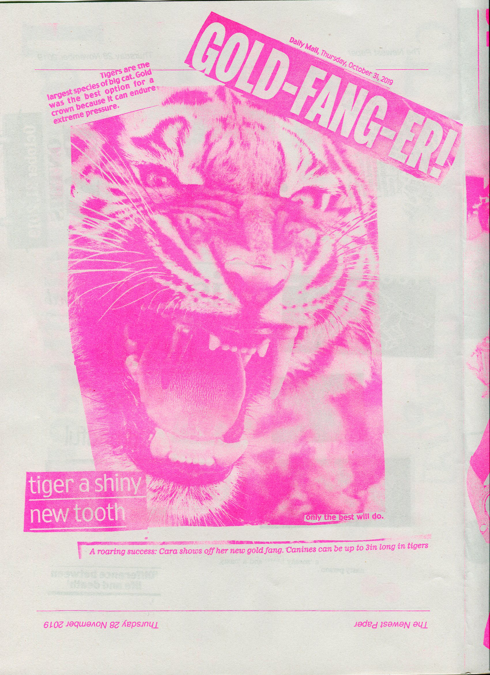 Pink printed collage